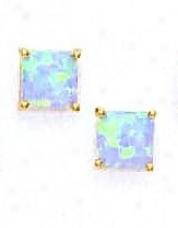 14k Yellow 7 Mm Adjusted Light Blue Opal Earrings
