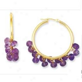 14k Yellow Beaf Hoop Amethyst Earrings