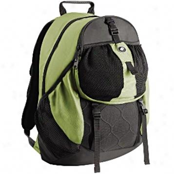 Pacsafe Adventure Daysafe 100 Anti-theft Backpack