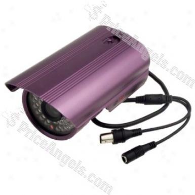 4002 Waterproof Ir 1/4 Sharp Ccd Cctv Camera With Night Vision-purple