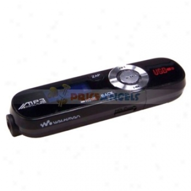Designer's 0.8-inch Lcd Usb Rechargeable Mp3 Player With Fm Radio(2gb)-black