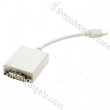 Mini Displayport Dp To Dvi24+5 Adapter Cable (1080p / 15cm Cable)