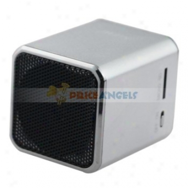 Nizhi Sports Style Mini Speaker Amplifier W/ Fm Radio+tf Card Usb Slots For Pc Mp3 Mp4 Player(silver)
