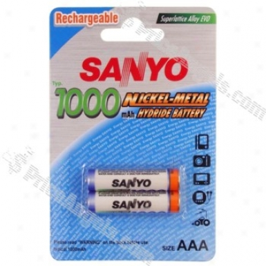 Sanyo Aaa 1000mah Ni-mh Rechargeable Battery(2-pack)