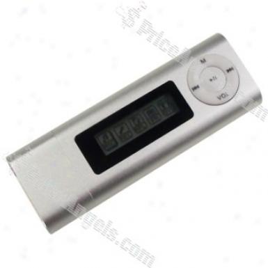 Syylisy Stick 3-in-1 Lcd Usb 2.0 Internet Radio Fm Mp3 Idler (2gb) - Silver