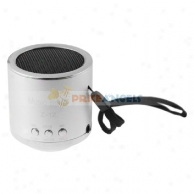 Z-12 3.5mm Audio Rechargeable Sports Speaker With Tf Card Slot/fm(silver)