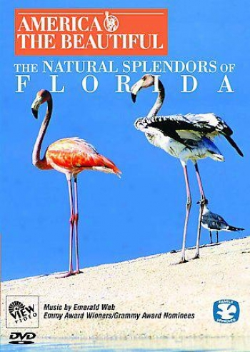 America The Beautiful: The Natural Splendor Of Florida