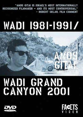 Amos Gitai: Territories - Wadi 1981-1991/wadi Grand Canyon 2001