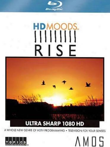 Hd Moods: Amos Rise
