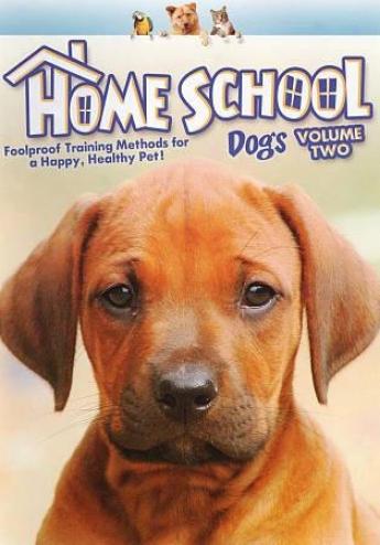 Home School: Dogs, Vol. 2