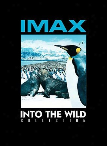 Imax Into Te Wild Collection