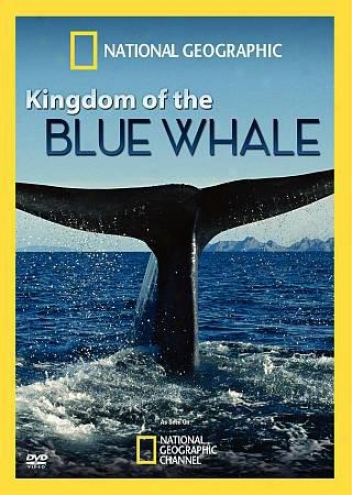 Sovereignty Of The Blue Whale