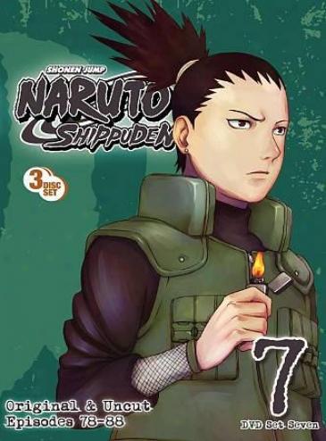 Naruto: Shippuden - Box Set 7