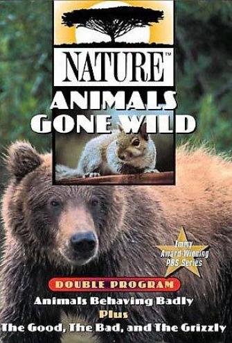 Nature - Animals Gone Wild