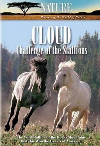 Nature: Cloud - Exception Of The Stallions