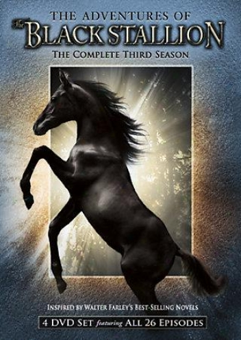 The Adventures Of The Black Stallion - The Complete Third Season