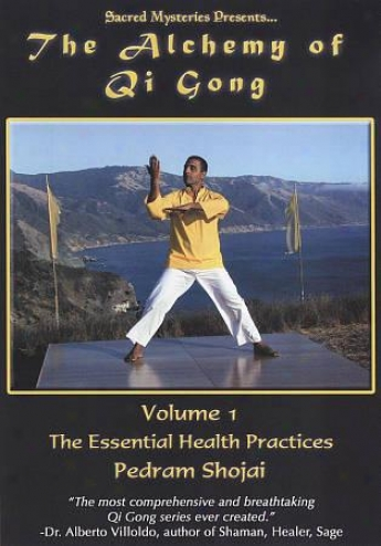 The Alchemy Of Qi Gong, Vol. 1: The Essential Health Practices