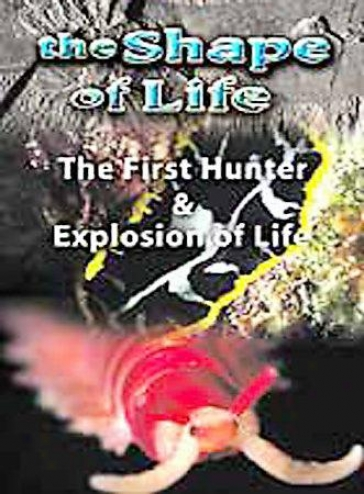 The Shape Of Life - Volume 2: The First Hunter/explosion Of Life