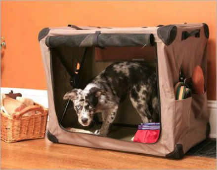 Abo Gear Dog Digs Collapsible Dog Crats - Large (ss)