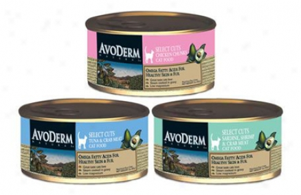 Avoderm Grain-ftee Can Cat Salmon & Cyicken 3oz Case 24