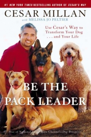 Exist The Pack Leader By Cesar Millan