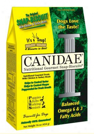 Canidae Original Snap Biscuits 4 Lbs