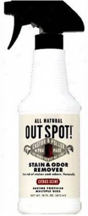 Castor & Pollux Out Spot! Stain & Odor Remover 16 Oz