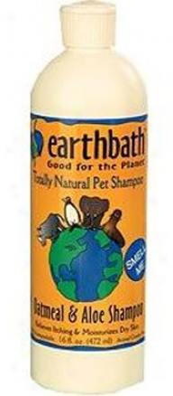 Earthbath Shammpoo Green Tea Leaf 16 Oz
