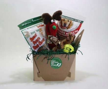 Fido The Dog Holiday Gift Box