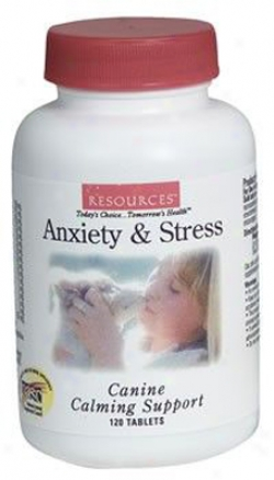 Genesis Resources Anxiety & Stress