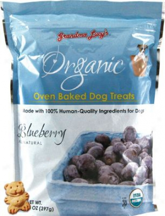 Grandma Lucy?s Organic Baked Treats Pumpkin 14 Oz