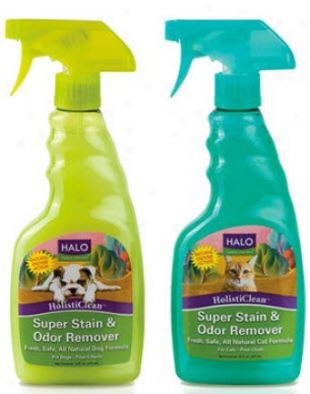 Halo Holisticlean Super Disgrace & Odor Dog Formula 16 Oz