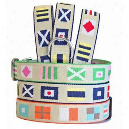Harry Barker Bristol Collar Pink/green 3/4 I nSm (ss)