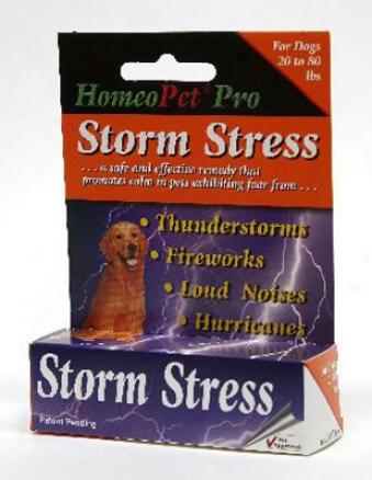 Homeopet Storm Stress Cats & Kittens
