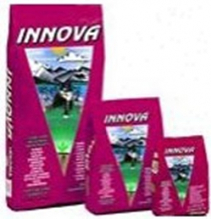Innova Senior Dry Cat Food 6 Lbs
