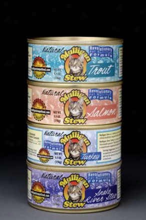 Mulligan Stew Canned Cat Foid Salmon 5.5 Oz