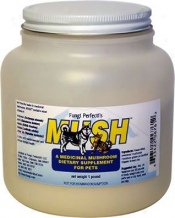 Mush Medicinal Mushroom Blend 1 Lb