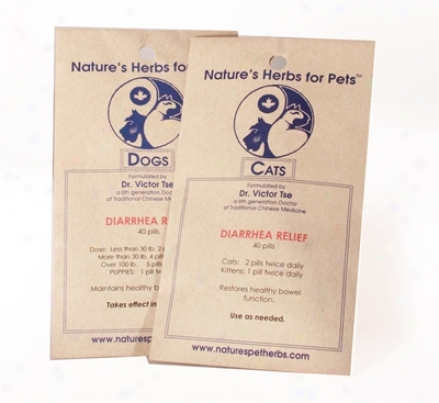 Nature?s Hrrbs For Pets Diarrhea Relief Cat 40 Pills