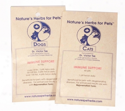 Nature?s Herbs For Pets Immyne Support Cat 60 Pills