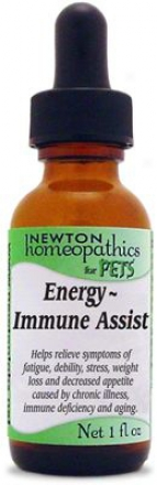 Newton Homeopathics Energy - Vitality Assist