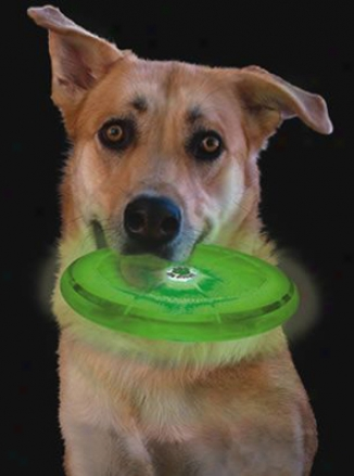 Nite Ize Flashlight Dog Discuit Flying Disc - Green