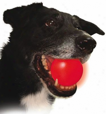 Nite Ize Meteorlight K9 L.e.d. Dog Ball - Red
