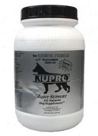 Nuprro Silver Daily Vitamin & Seam Dog Supplement 30 Oz