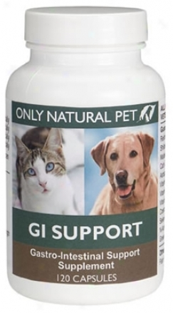 Only Natural Pet Gi Support