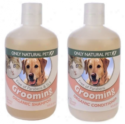 Sole Illegitimate Pet rGooming Shampoo 16 Oz