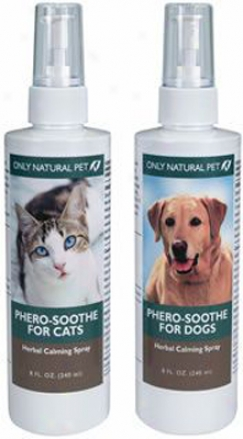 Only Natural Pet Phero-slothe Dog Herbal 8 Oz