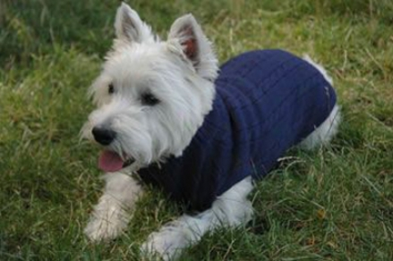 Organic Wool Dog Sweaters - Medium Olive (ss)