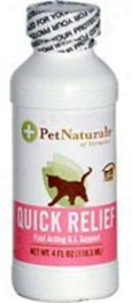 Pet Naturals Of Vermont Quick Relief Dog 4 Oz