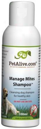 Petalive Manage Mites Shampoo