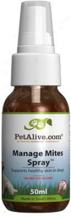 Petalive Conduct Mites Spray
